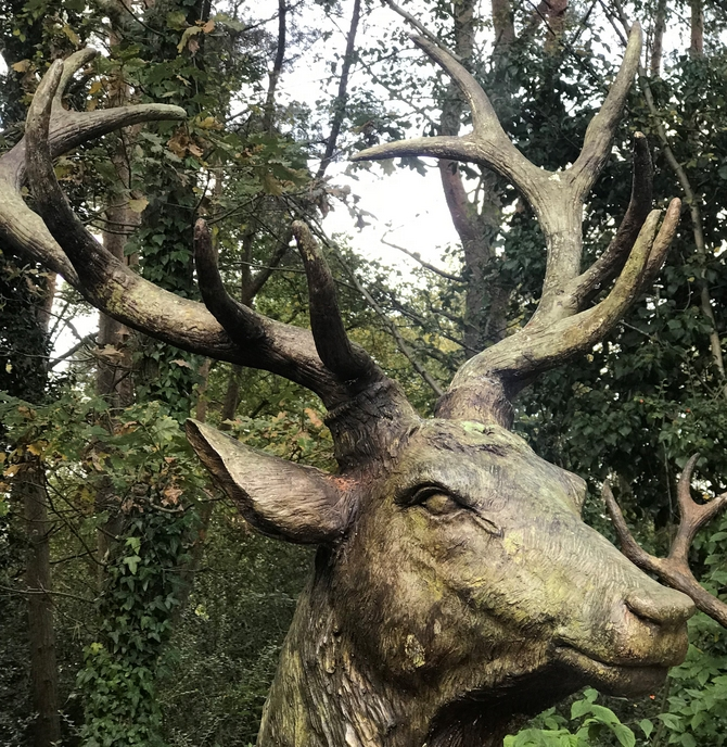Fully Grown Adult Bronze Stags