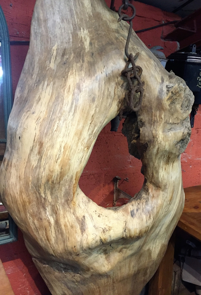 Extremely Rare Tree Burr SOLD