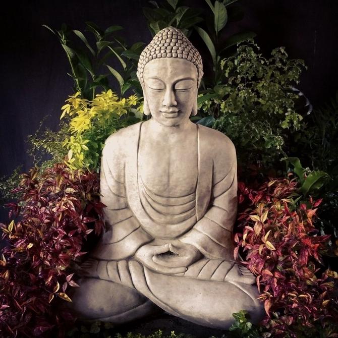 Buddha Giant