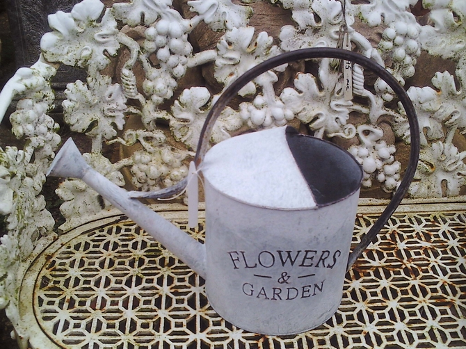 Flowers & Garden Watering Can AR901