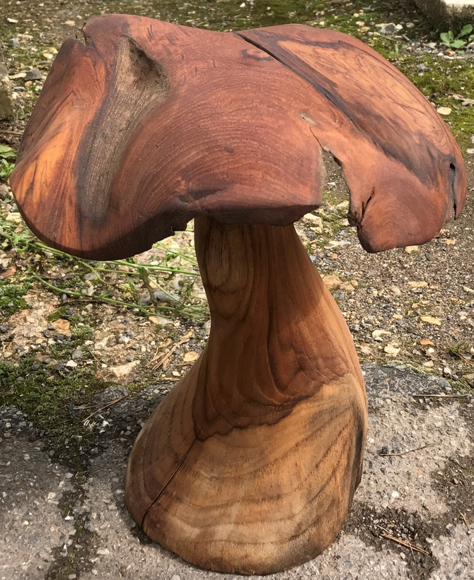 Handmade Teak Mushrooms