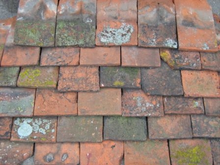 Reclaimed Peg Tiles AR588